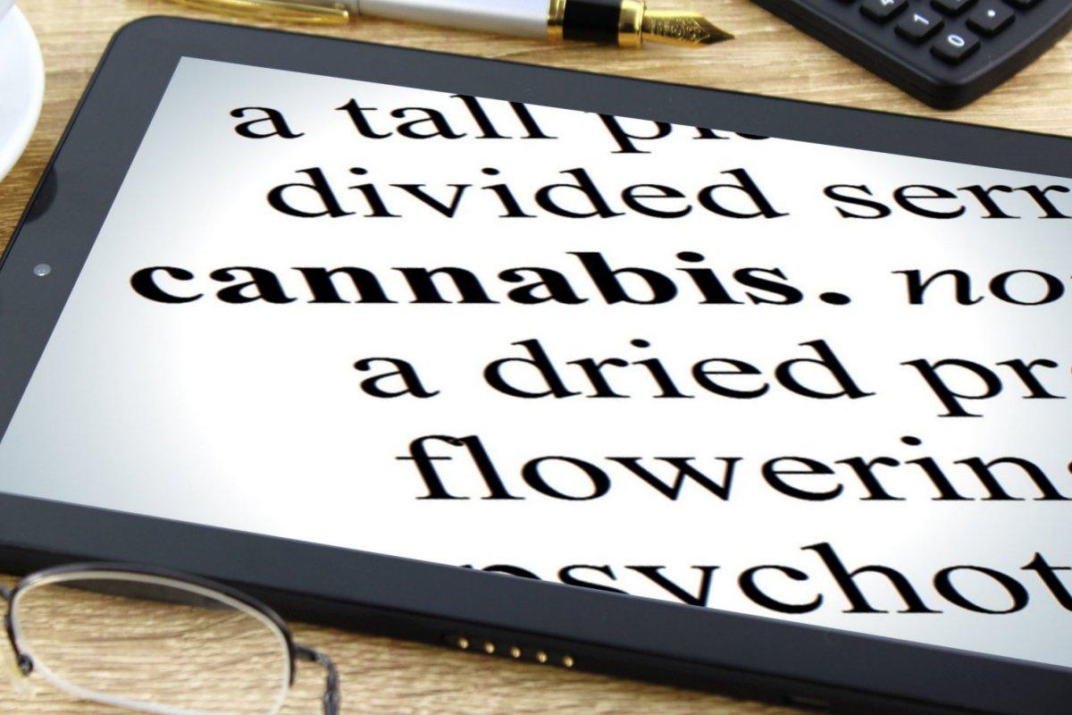 http://www.stonerchef.pl/wp-content/uploads/2018/06/cannabis.jpg