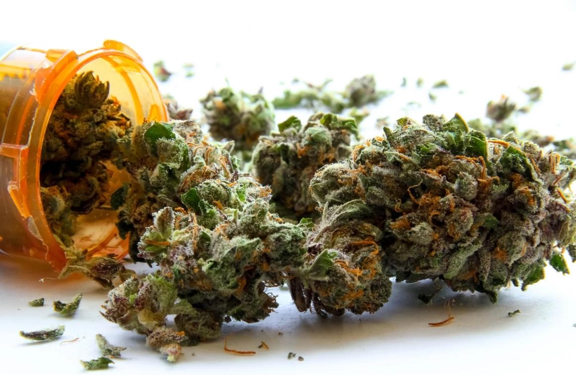 http://www.stonerchef.pl/wp-content/uploads/2019/02/roznica-miedzy-medyczna-marihuana-a-rekreacyjna.jpg