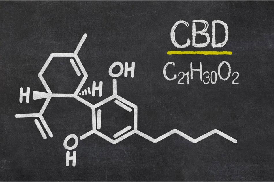 cbd a metabolizm