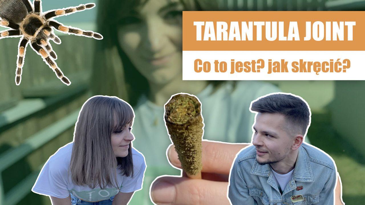 https://www.stonerchef.pl/wp-content/uploads/2020/06/miniatura-tarantula-joint-1280x720.jpg