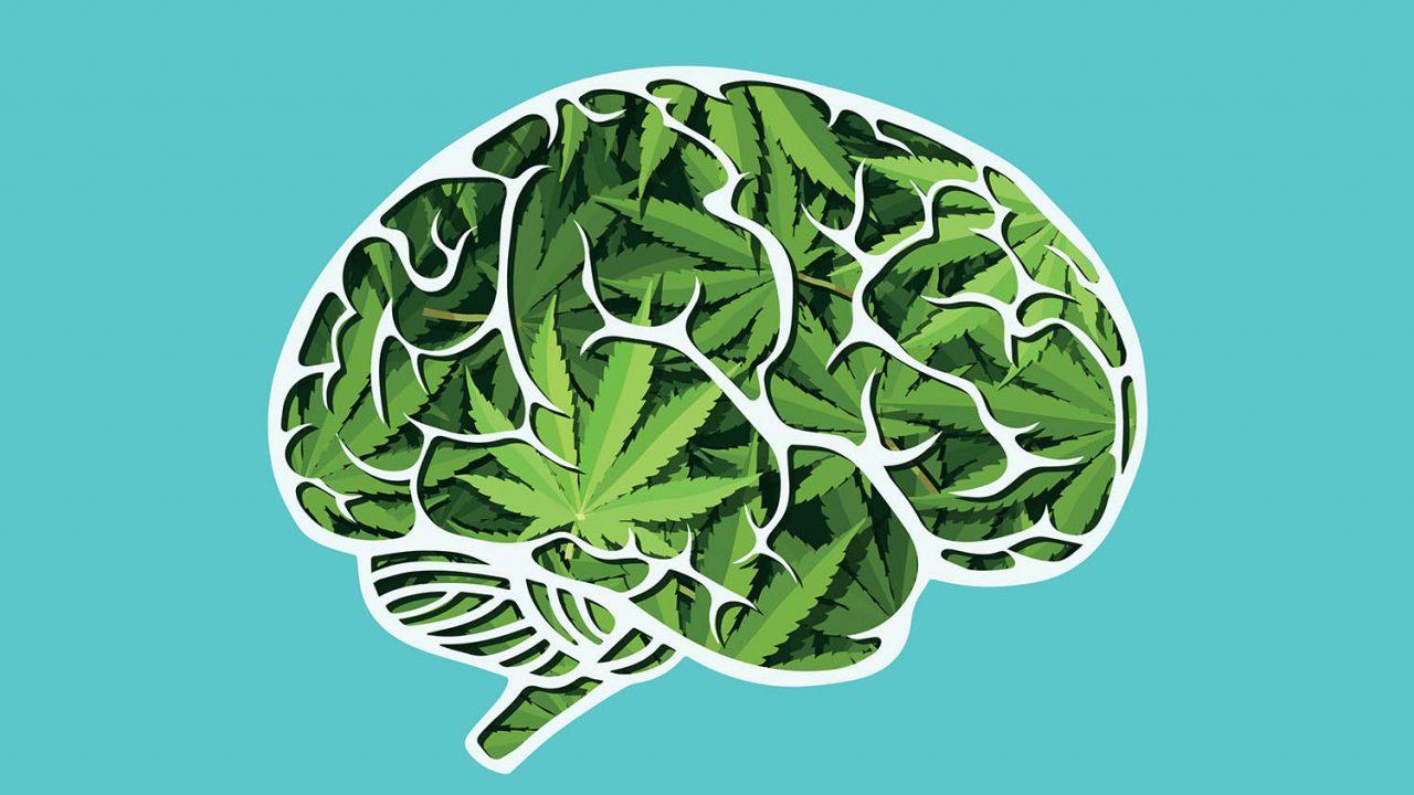 https://www.stonerchef.pl/wp-content/uploads/2020/08/czy-marihuana-jest-dobra-dla-mozgu-1280x720.jpg