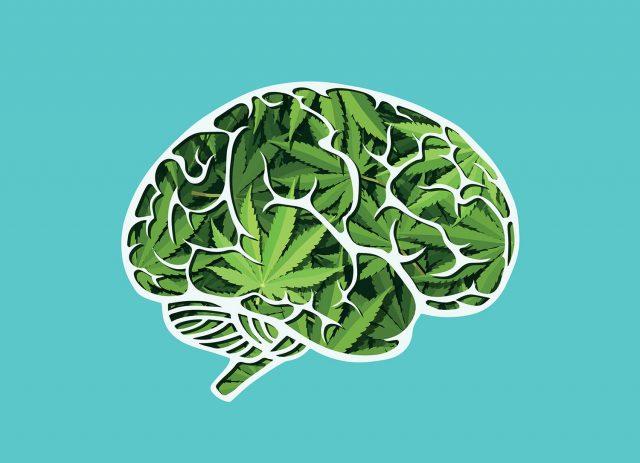 czy marihuana jest dobra dla mózgu