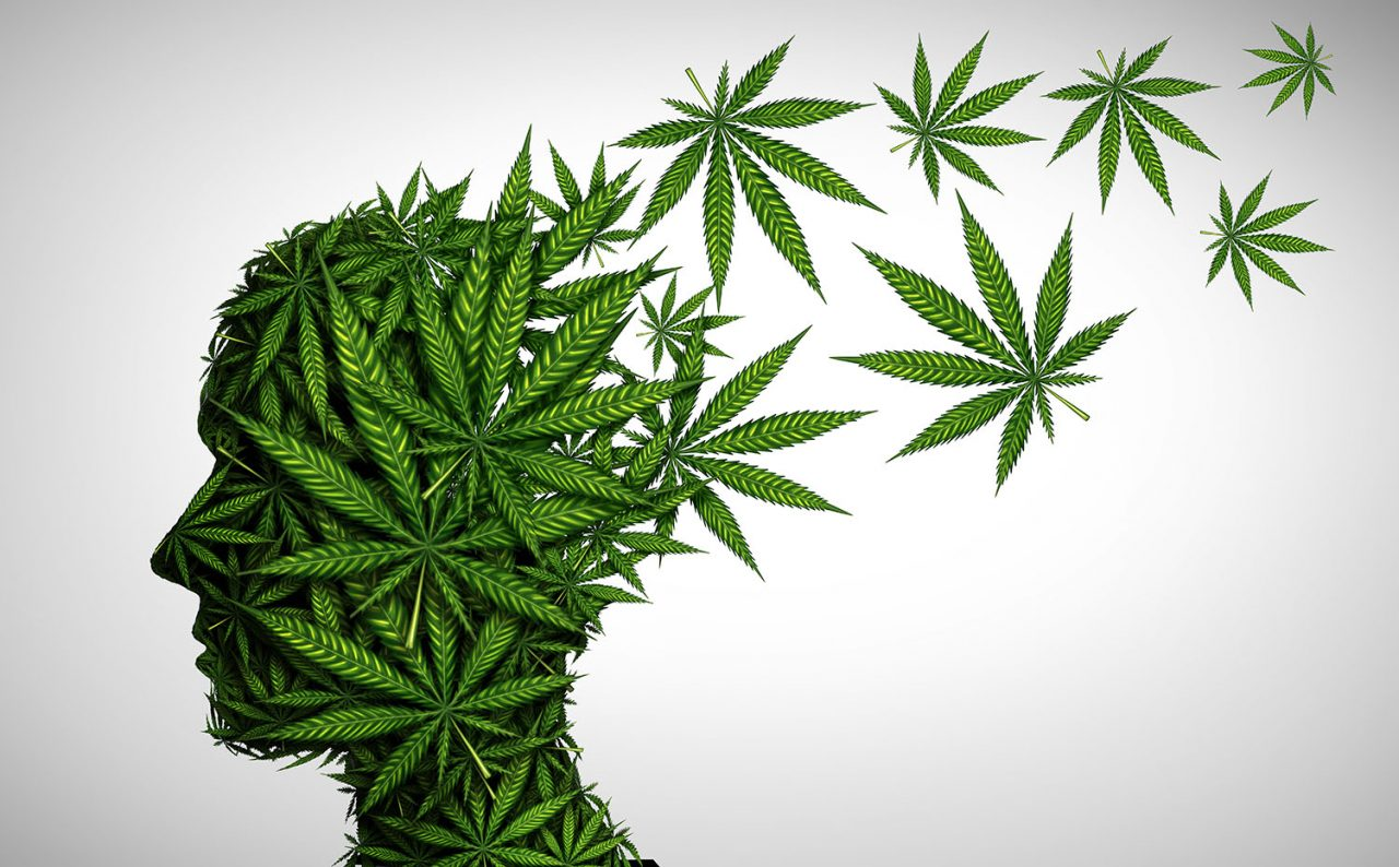 jak marihuana wpływa na mózg?